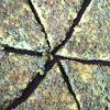 Mixed Herb Pancake (Kookooye Sabzi)